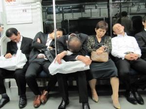 Japonais dormant