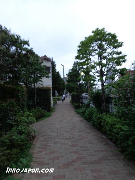 Chemin 1
