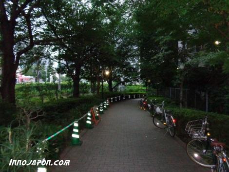 Chemin 3