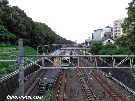 Harajuku train