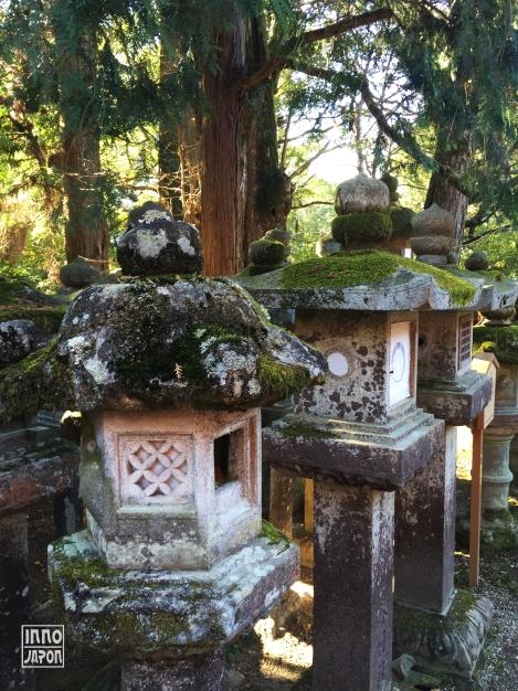 Nara forêt